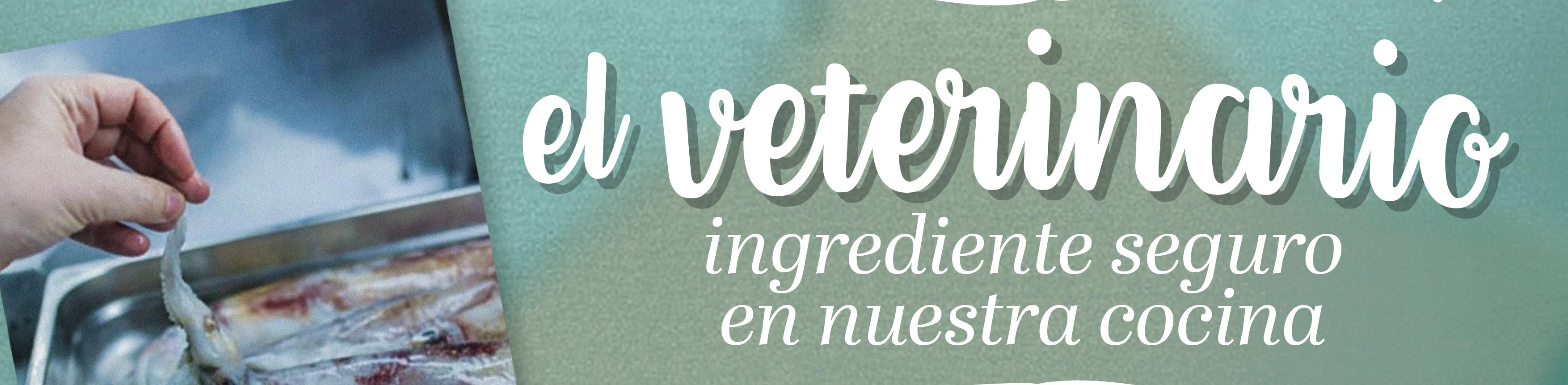cartel-veterinario-ingredienteRGBfd-d