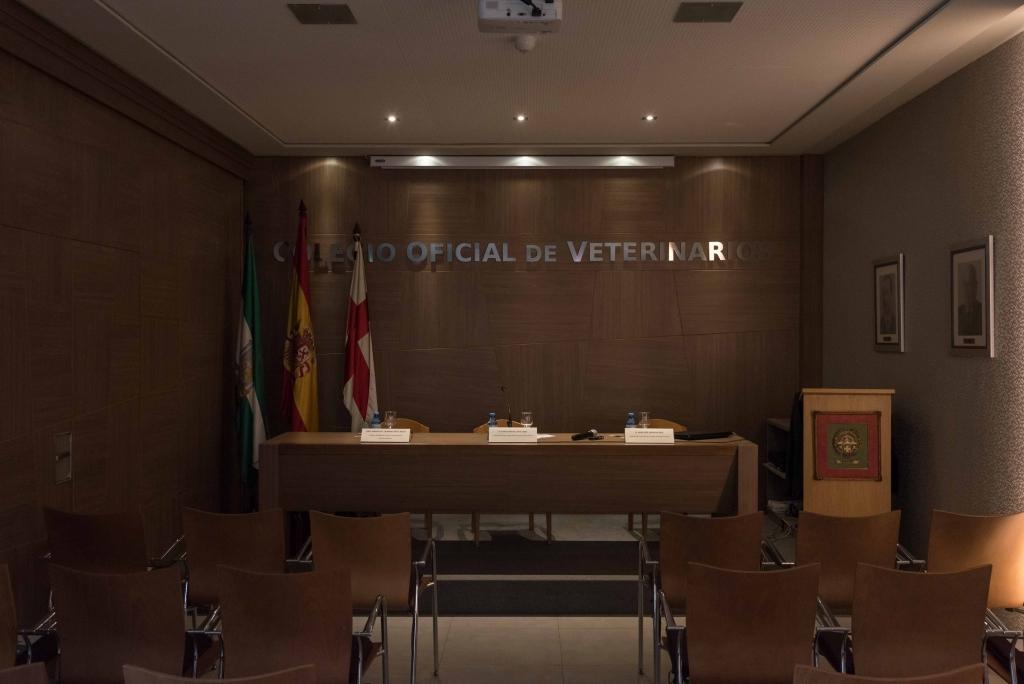 Museo Veterinario (9)