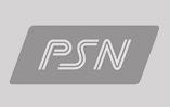 logo-psn-grey