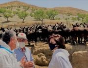 200710 Yasmina Domínguez, presidenta del COLVET Almería, Santiago Ejea, veterinario director sanitario de la ADSG Rumiantes del Marquesado, y Pedro Fernández, ganadero