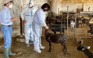 210309 Yasmina Domínguez, presidenta del Colegio Oficial de Veterinarios, en una visita a una granja